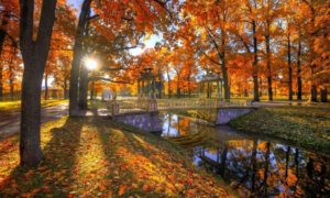 Catherine Palace garden in autumn