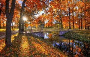 Jardin du palais Catherine en automne