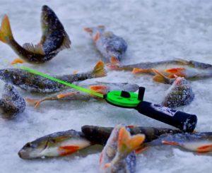 Canne à pêche sur glace