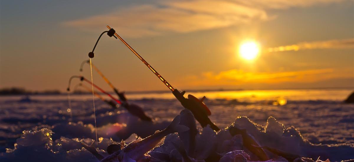Winter Fishing from St. Petersburg