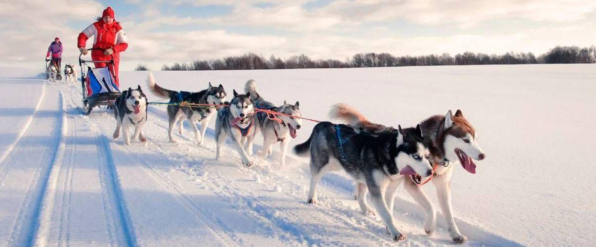 Winter Activities in Karelia, Petrozavodsk