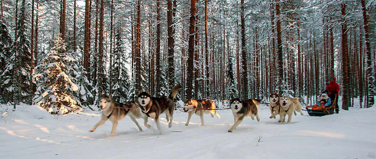 Winter Activities in Karelia, Sortavala